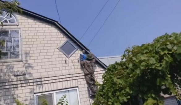 Жителів Канева атакували небезпечні комахи (ВІДЕО)