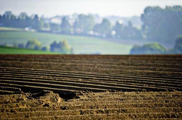 Майже 3800 учасників АТО отримають земельні ділянки на Черкащині