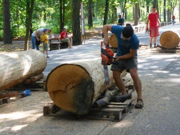 У черкаському парку майстри взялися за створення унікальної альтанки (ФОТО)