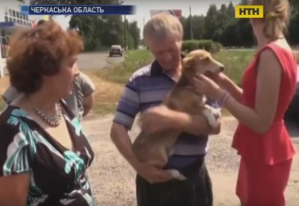На Черкащині сусіди врятували песика від власника-садиста (ВІДЕО)