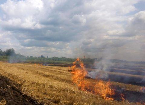На Черкащині оголосили попередження про пожежну небезпеку