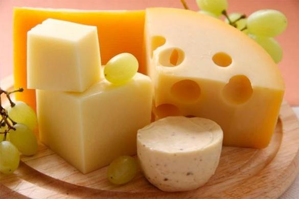 На Черкащині селяни налагодили бізнес із виробництва голландського сиру (ВІДЕО)