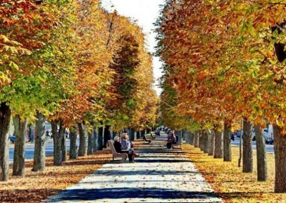 Якою неймовірною є осінь у Черкасах (ФОТО)