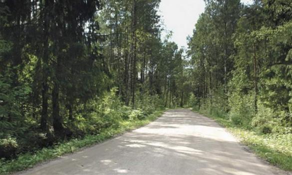 На Черкащині відремонтували лісові дороги