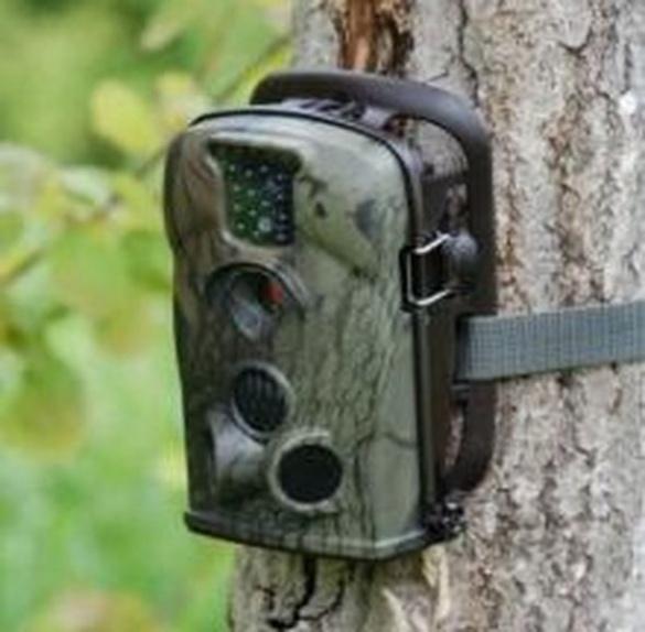 У лісах Черкащини встановили відеоспостереження