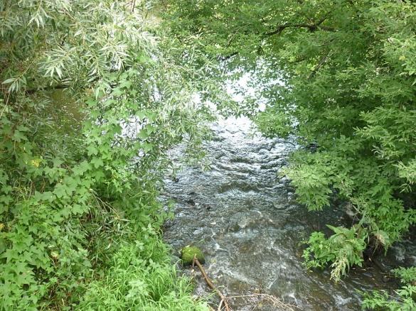 На Черкащині річку засмічували землею та будівельними відходами