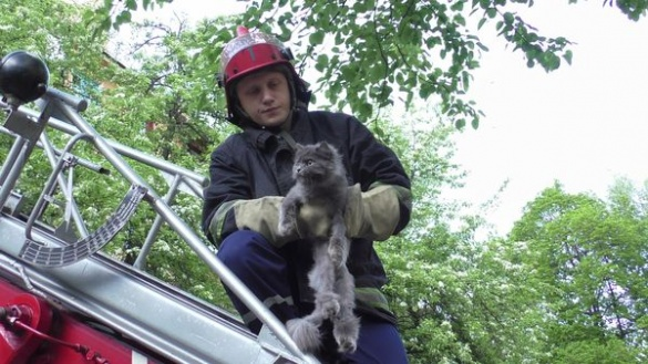 Коли залишився останній шанс: ТОП-7 гучних порятунків на Черкащині
