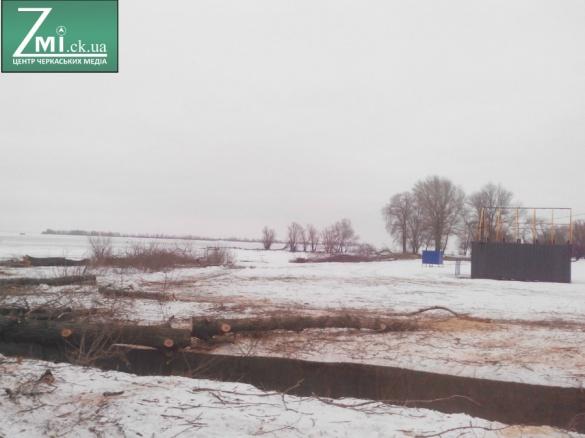 На березі Дніпра у Черкасах почали зрізати дерева (ФОТО)