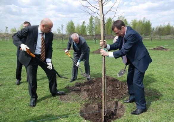 До відома черкаським посадовцям: 6 причин, чому не слід висаджувати дерева у діловому костюмі