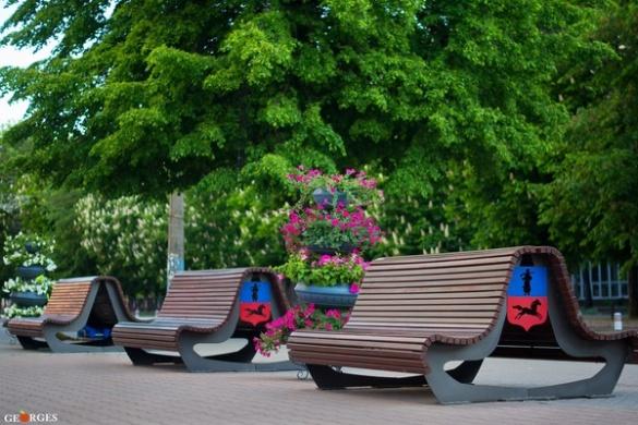 Середмістя Черкас прикрасили оригінальними квітниками (ФОТО)