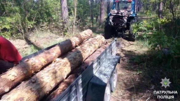 На Черкащині затримали нелегальних лісорубів