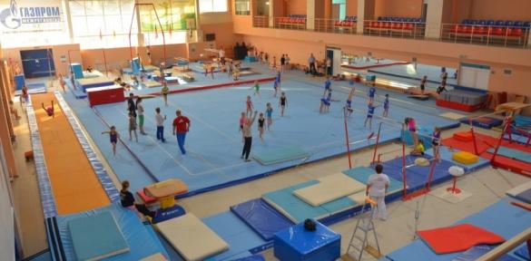 Для черкаських гімнастів хочуть закупити неякісне обладнання за завищеними цінами