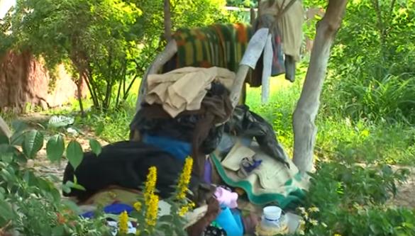 Уманчанка три роки зносить сміття до житлового будинку (ВІДЕО)
