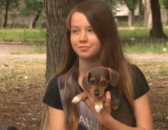 Черкаська школярка допомогла сотням безпритульних тварин