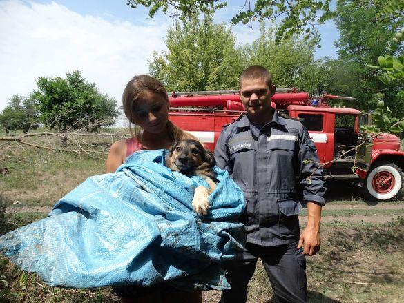 На Смілянщині рятували собаку, який впав у колодязь