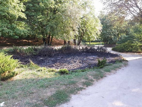 В одному із черкаських парків побували вандали (ФОТО)