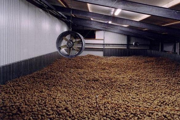 На Черкащині планують побудувати завод з виробництва чіпсів