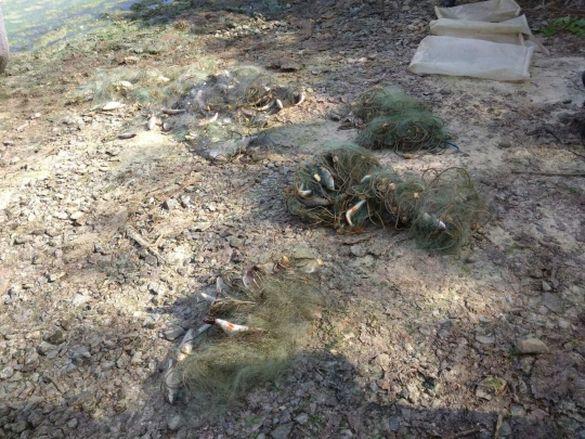 На Черкащині затримали двох бракон'єрів