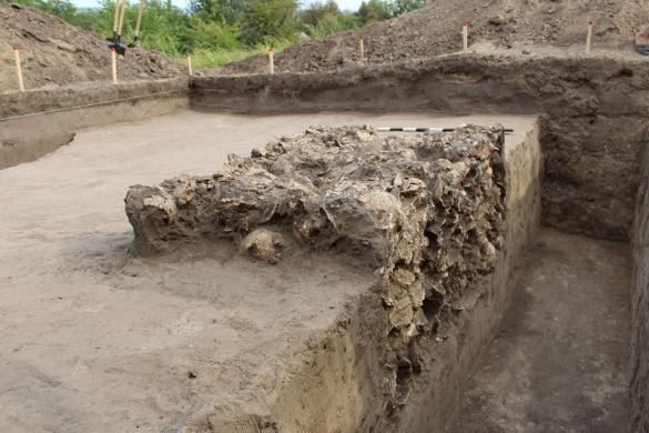 Стали відомі подробиці знахідки людських черепів у Чигирині