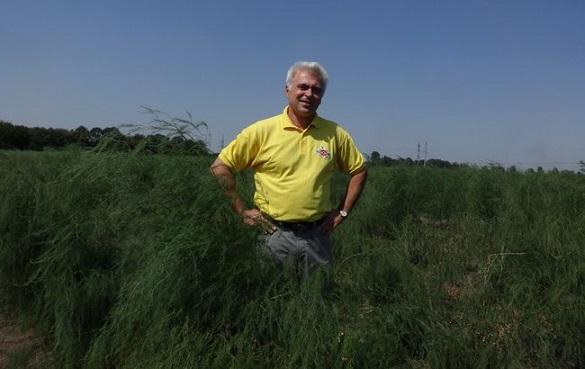 Черкащанин розповів, як заробити півмільйона з гектара та чому переїхав із Австралії