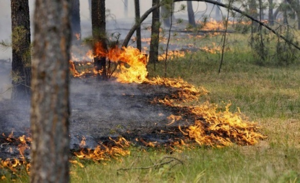 Черкащан попереджають про надзвичайну пожежну небезпеку