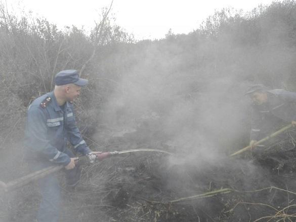 У Черкаській області загасити вогонь на торфосховищах не допоміг навіть дощ