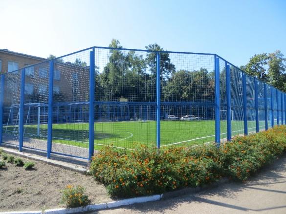 Майже 6 млн державних коштів: на які спортмайданчики в Черкасах чекає ремонт?