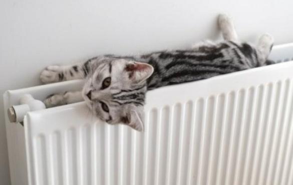 Стало відомо, чому не в усіх будинках у Черкасах потепліли батареї