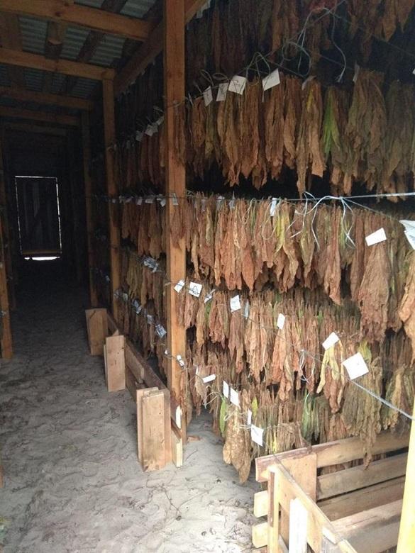 У Черкаській області викрили підпільну тютюнову фабрику (ФОТО)