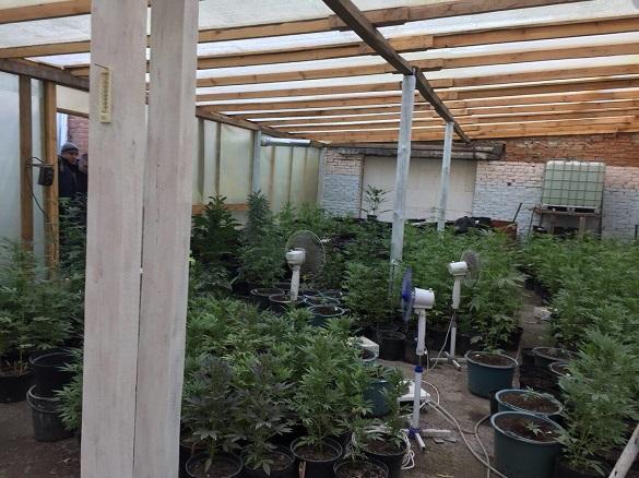У Черкаській області затримали наркоторговця, який намагався підкупити правоохоронців