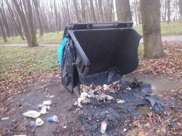 Спалили смітник, понівечили скульптуру: у черкаському парку розгулялися вандали (ФОТО)