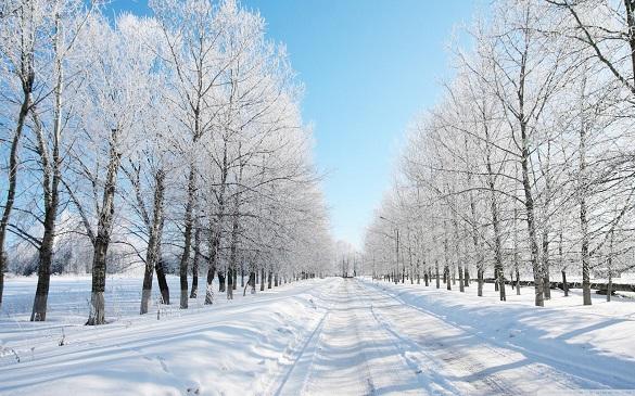 Черкащанам прогнозують ще тиждень без справжньої зими