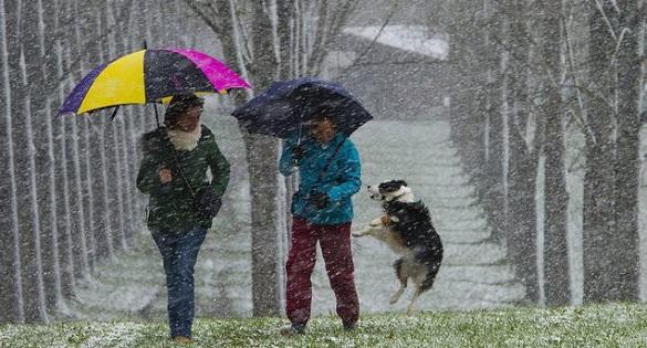 Мороз та невеликий сніг: синоптики розповіли про погоду у Черкаській області