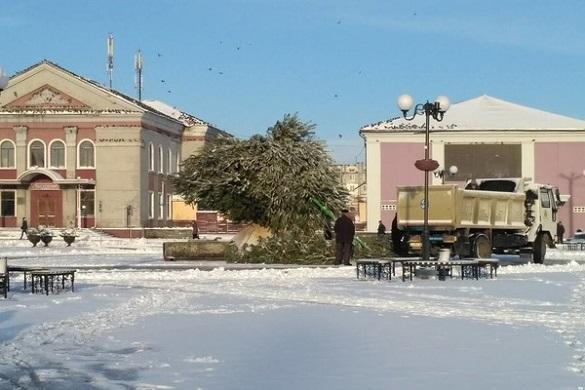У Черкаській області сильний вітер зламав новорічну ялинку (ФОТО)