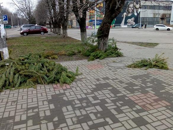 У Черкасах непродані ялинки розкидали в центрі міста (Фотофакт)