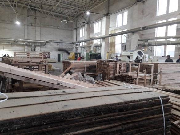 У Черкасах виявили підпільний цех з обробки деревини