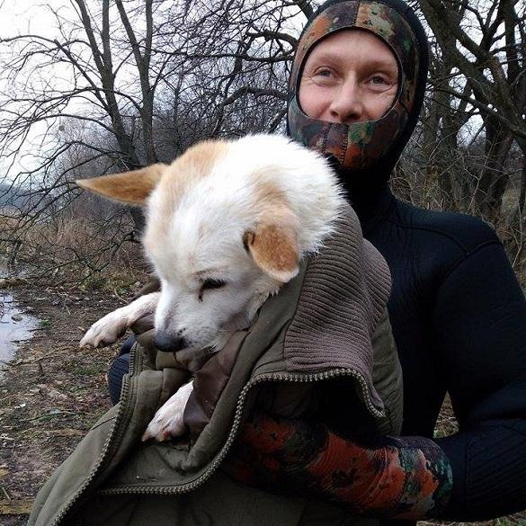 Черкащани врятували собаку, який близько доби провів посеред озера