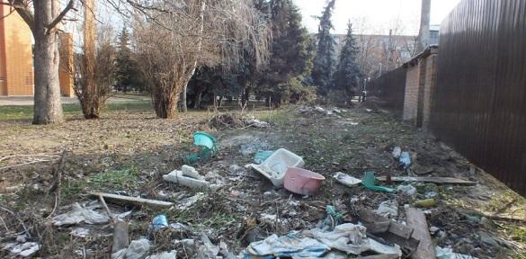 У центрі Черкас зрізали ялини і влаштували смітник (ВІДЕО)