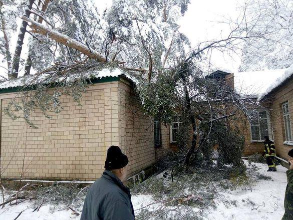 У Черкасах впало дерево на адміністративну будівлю (ФОТО)