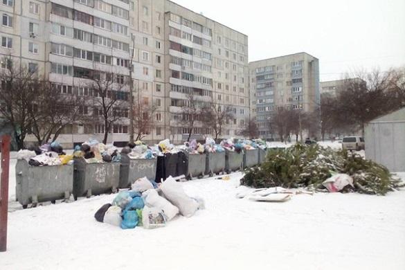 Щоб не було, як у Львові: чому з черкаських дворів вчасно не вивозять сміття?