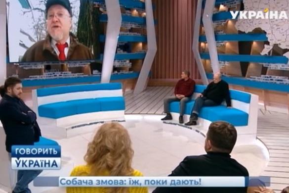 Про собакоїда з Черкащини заговорили на всеукраїнському шоу (ВІДЕО)