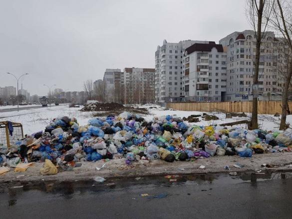Заступник міського голови Черкас повідомив, як триває боротьба за чисте місто