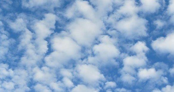 На Черкащині прогнозують теплу погоду та незначні дощі