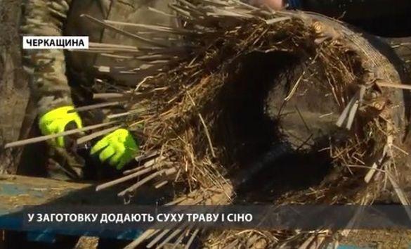 На Черкащині будують пентхауси для качок (ВІДЕО)