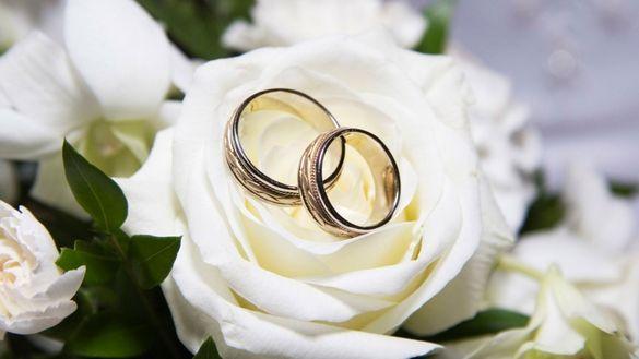 Стало відомо, скільки пар на Черкащині уклали шлюб за добу