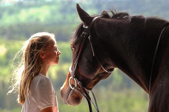 На Черкащині коні допомагають лікувати дітей (ВІДЕО)