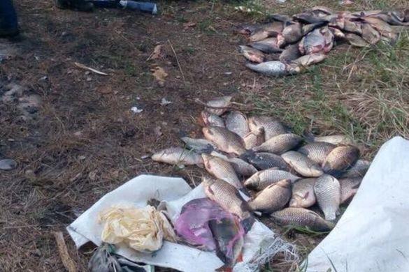 На Черкащині браконьєри завдали державі збитків на суму вісім тисяч гривень (ФОТО)