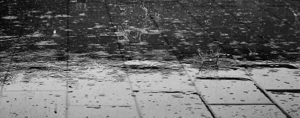 Черкащанам розповіли, що очікувати від погоди в регіоні