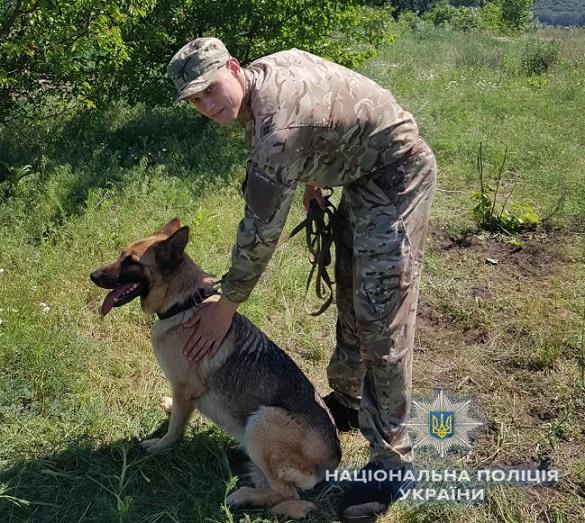 На Черкащині службовий пес допоміг відшукати зниклого пенсіонера (ФОТО)