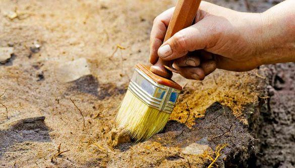 Найбільше у світі поселення трипільців знайшли на Черкащині (ВІДЕО)